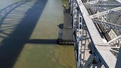 rio negro, contaminacion