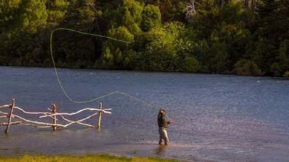 pesca, deportiva, mosca