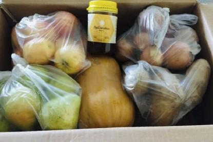 provisión de frutas verduras