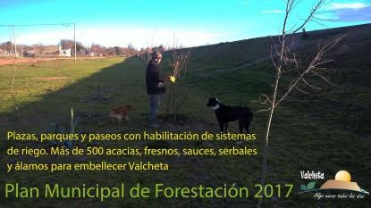 valcheta, forestacion
