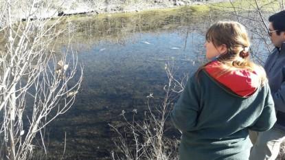 rio negro, magdalena odarda, contimacion