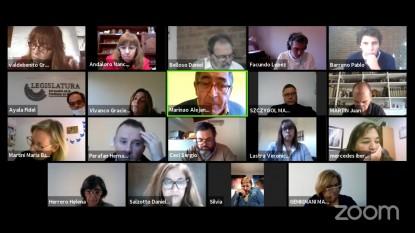legisladores, videoconferencia