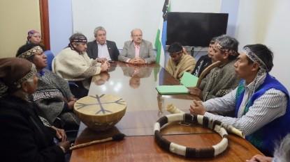 pueblos originarios reunion gobierno