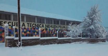 mediadores del nehuen