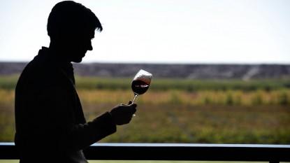 pinot noir, vinos, cata de vinos
