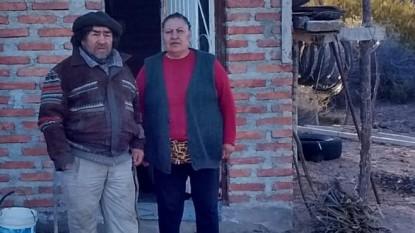 mapuches, el cuy
