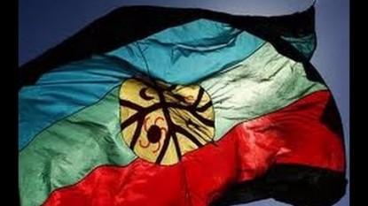 bandera pueblo mapuche